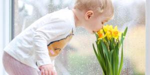 olfatto del bambino